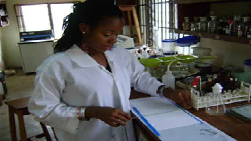volunteer abroad placements | medical technician, Sphenoid